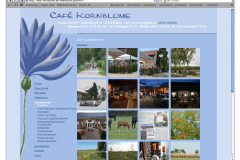 Kornblume2